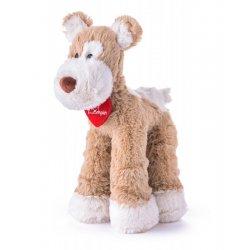 Minkštas pliušinis šuniukas terjeras - Kalamity